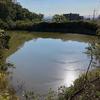 丸池(和歌山県和歌山)