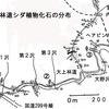 佐久の地質調査物語(瀬林層-4)