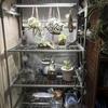 2021.04.27 簡易温室と水槽水替え