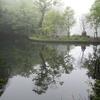 霞む雲場池