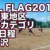 NFL FLAG'18秋 南関東大会一般カテゴリ第3日程@所沢の試合結果と動画(フラッグフットボール)