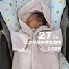 【3w6d】予算500円ズボラ飯-鮭のムニエル-(day27/222)