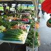 サマランカマーケット 2008年12月13日