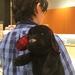 【スタッフブログ】犬!ダックス型のフルートケース!~いしざき選りすぐりの商品ご紹介(1時間目)~