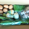 【体験シェア】『坂ノ途中』で初回限定のお試しを注文!野菜の宅配サービスで届く野菜って?