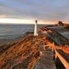Castle point へ朝日で朝日を拝むinニュージーランド