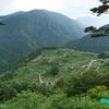 天空の茶畑 《#3》 ― 絶景また絶景 ―