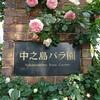 中之島バラ園(5/14撮影)