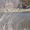湖沼釣り日記(令和3年3月①・大槻公園釣行)