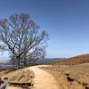奈良県『若草山(わかくさやま)』 のんびりまったり生きていきたいなあ。