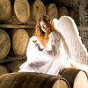 【初心者向け】ウイスキー用語「天使の分け前/エンジェルズシェア」を徹底解説!