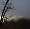 大台ケ原「神話の森」