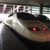 スペイン版新幹線 Renfe AVEの一等車に乗ってみたので、その感想とチケットのオンライン予約方法を解説します。