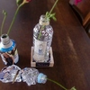空のペットボトルで作る一回使い切りのインスタント花器・DIYアイデア3つ