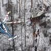防災ヘリ墜落、3人死亡…残る6人安否不明
