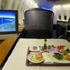 タイ国際航空 TG317 スワンナプーム(バンコク)→ムンバイ 【ロイヤルシルククラス搭乗記】