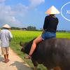 【ダナン・ホイアン】ホイアン・エコ・ココナッツ・ツアー!!初めてベトナムのローカルツアーに参加してみた【ベトナム旅行】