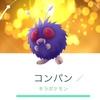 コンパン → モルフォン(キラ進化)