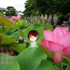 【おそとのええとこ】泥の中から未来を目指して【奈良-西ノ京・ロータスロード】