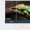 これは便利!無料の画像圧縮ツール「Compressor.io」の使い方