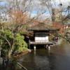 【和歌山観光】西ノ丸庭園と茶室「紅松庵」でのんびり観光