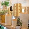 雑貨や小さい鉢、睡蓮鉢、入荷しています♪(*'▽')