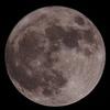 今夜のお月様 (^。^)