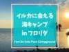 イルカに会える海キャンプ Fort De Soto Park | フロリダのおすすめ【アメリカキャンプレビュー】