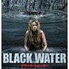 映画感想:「ブラック・ウォーター」(50点/生物パニック)