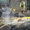 33歳の1月 伊豆旅行① シャボテン動物公園がどれだけ楽しいかを伝えたい