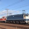 第1490列車 「 宮原(操)へ戻るデーテン配給を狙う 」