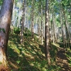いま、この時代に、林業をするということ。