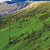 【速報】草津白根山が噴火で草津国際スキー場は大丈夫?