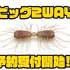 【レイドジャパン】サイトフィッシングにオススメのワーム「ビッグ2WAY」次回出荷分予約受付開始!