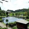「八ヶ岳」日本名水100選のおすすめ釣り堀~親子遊学