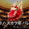 ミラノ・スカラ座バレエ団2016日本公演『ドン・キホーテ』本日開幕