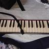 【鍵盤ハーモニカ】HAMMOND PRO-44HP買った【音源あり】