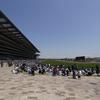 この春、競馬を始めたい人たちへの東京競馬場ガイド