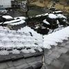 雪ですか…そうですか