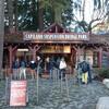 【観光】幻想的な冬のキャピラノ吊り橋を満喫(バンクーバー)