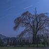 【天体撮影記 第53夜】 満月の夜の下、墓守の桜は静かに佇む
