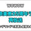 安室奈美恵25周年ライブを再放送!WOWOWなら見逃しオンデマンドもあるよ