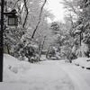 今回の金沢積雪を経て、教訓と反省