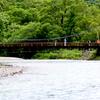 る梅雨空の上高地(河童橋から明神館)の林間の風景と岩魚(いわな)