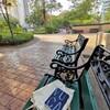 公園で読書。お金がかからない優雅な時間。