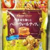 ジャパンフリトレー オトナドルチェ 素材を愉しむ ハニーウォールナッツ味