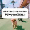 愛犬家必見!犬とショッピングできる⁈〜人もペットも楽しめる広島のアウトレットモール「マリーナホップ」〜