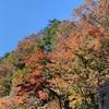 高尾山登山記録