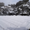 【旅行記】雪の京都散策1~仁和寺編~