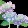 誰がために花は咲く ~For Whom The Flowers Bloom